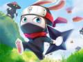 Jeux Ninja Rabbit